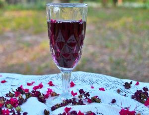 Wine & Blooms