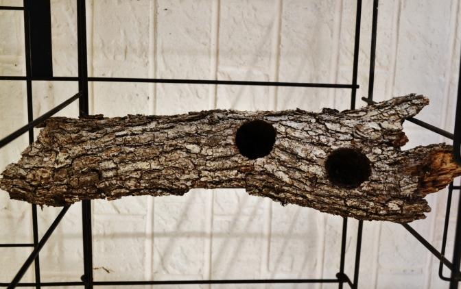 wood art (6) (1280x805)