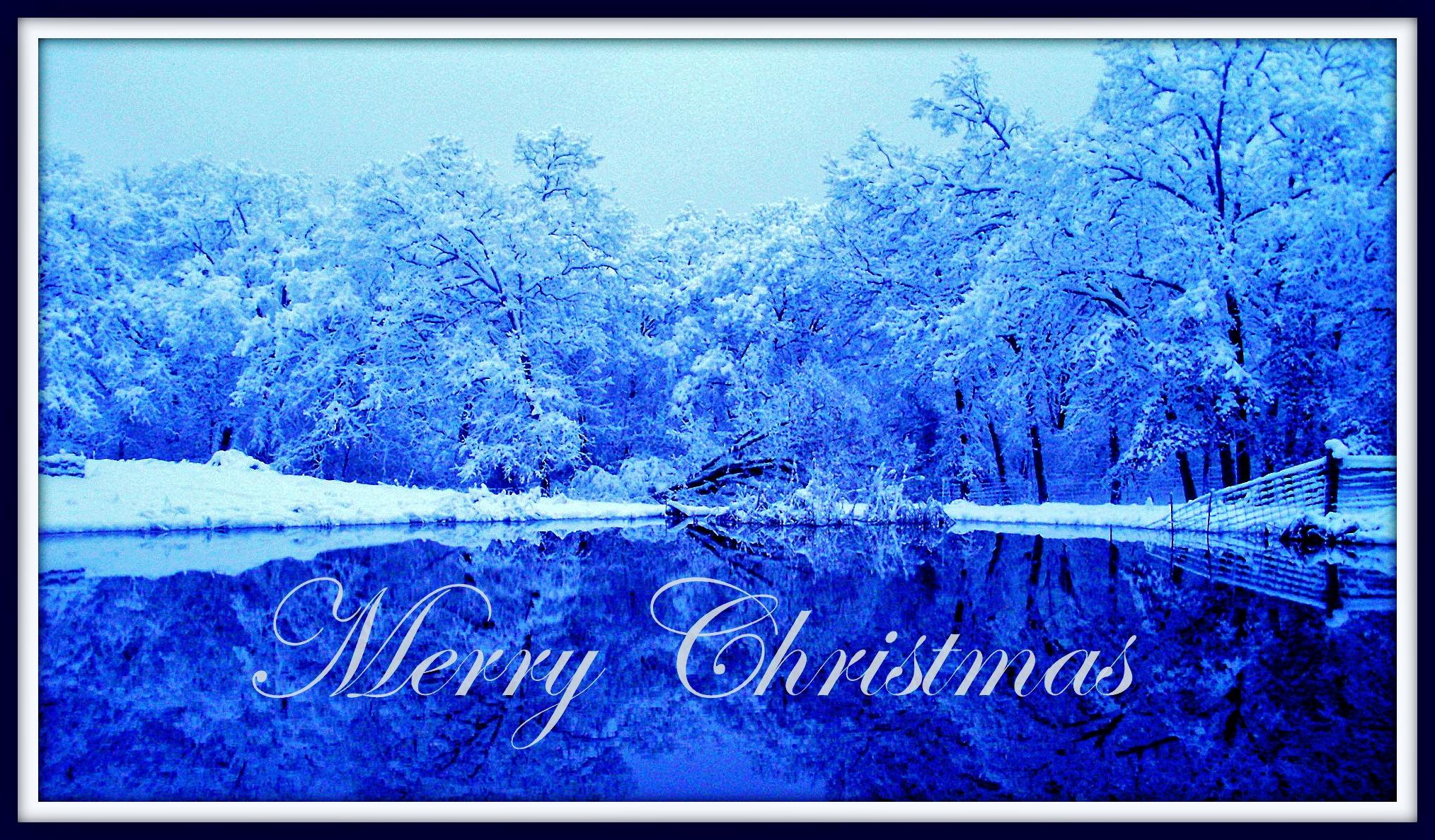blue Christmas card.jpg