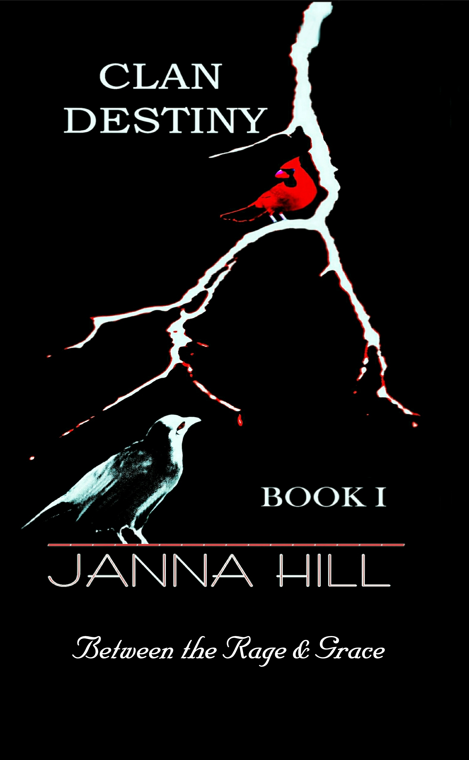 BOOK 1 COVER with title