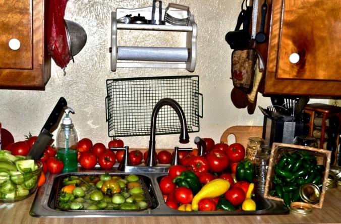 Garden Vegetables (5) (1024x673)