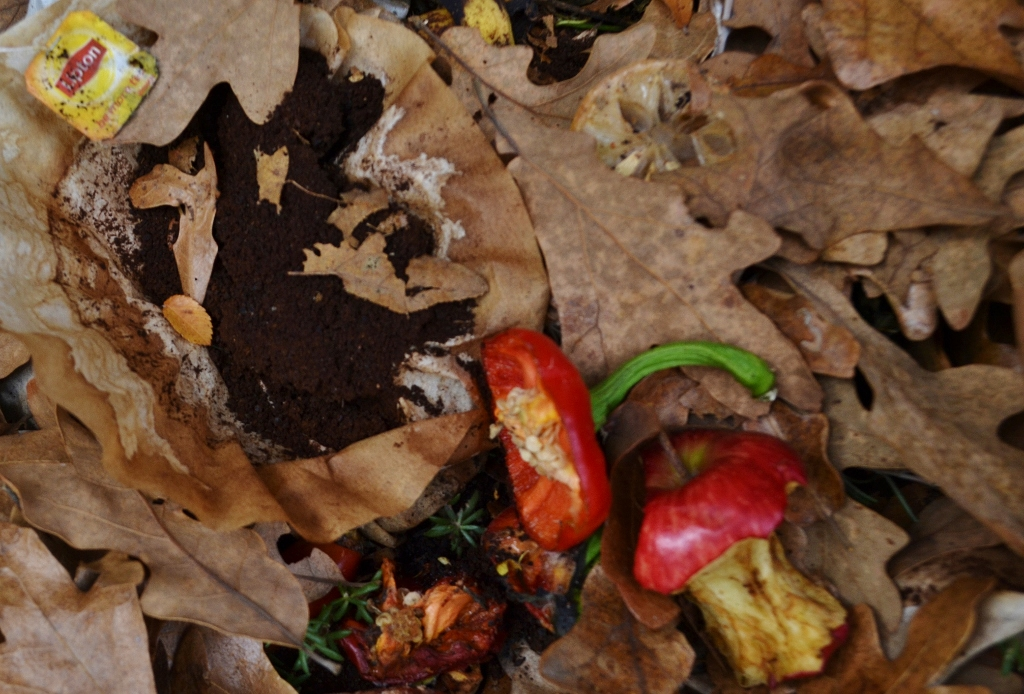 compost (1024x694)