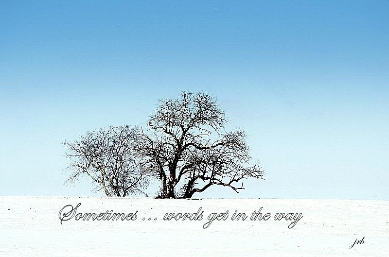 Winter Sabbatical
