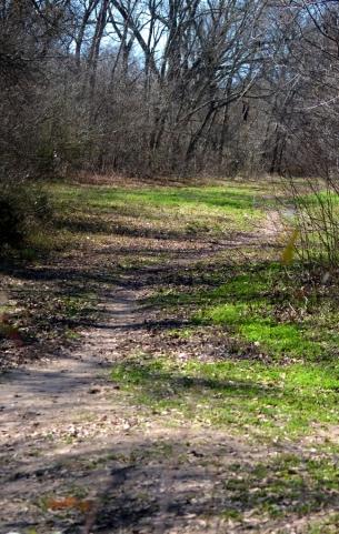 path (648x1024)